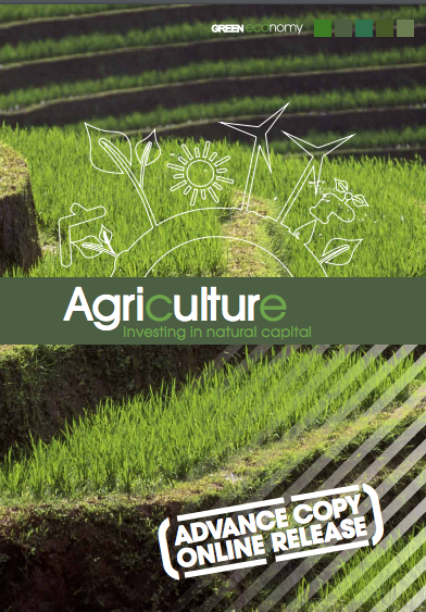 Agriculture: Investing in Natural Capital