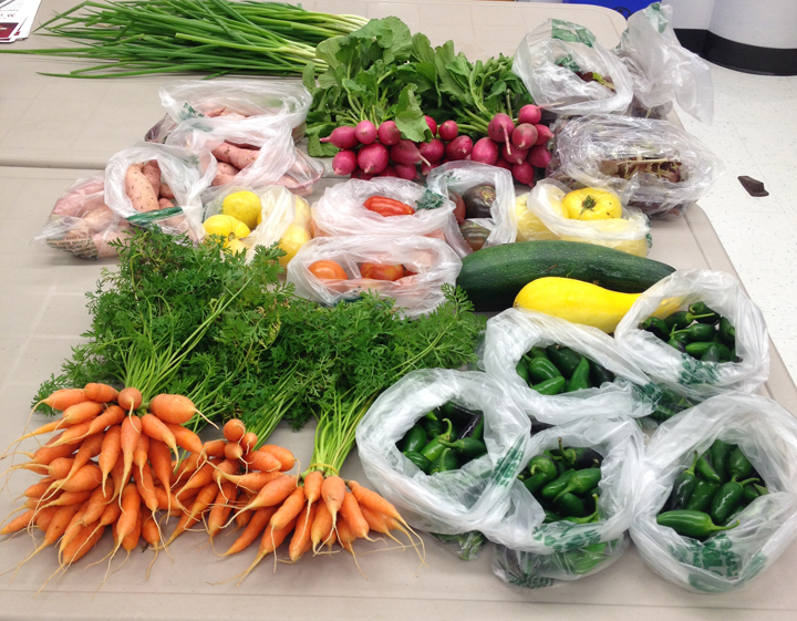 This past summer and into late fall, HCF associates incorporated more complete nutrition into their workday with a variety of vegetables provided by community-supported agriculture (CSA).