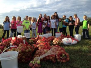 Healthy Communities: volunteers glean produce for After the Harvest